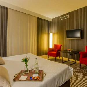 Gran Hotel Durango 18